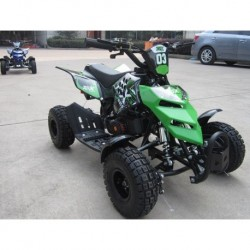 MINIQUAD RAPTOR 49CC QUAD MINI ATV MINIATV
