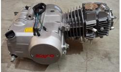 BLOCCO MOTORE COMPLETO 125 4T YX - pit bike cross 4 tempi 11CV marce