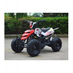 MINIQUAD RAPTOR XXL 49CC QUAD MINI ATV MINIATV